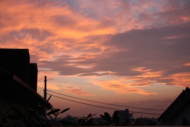 2008_09_25_2739.jpg